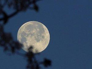 800px-Moon_at_night